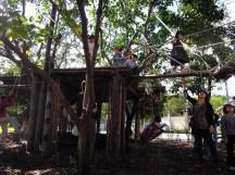 慈心華德福小學在建築課搭建樹屋,讓孩子可以用身體體驗這個世界,感受完成作品的成就~