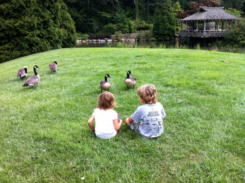 Who's in for Duck Duck Goose?