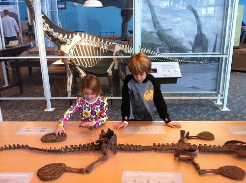 The dino exhibit at the Maryland Science Center: The kids' museum in Baltimore is a fantastic shutdown-immune option for fun with the kids