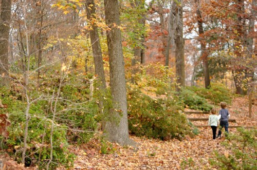 The National Arboretum is beautiful all year 'round, but it's especially spectacular in autumn