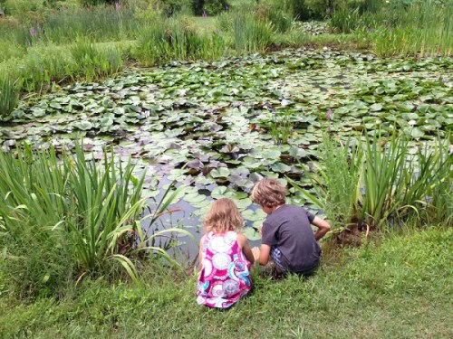 Playing by the ponds at Kenilworth Aquatic Gardens