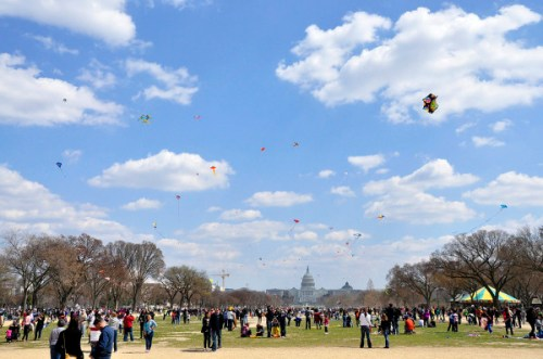 A sky full of sails at last year's Blossom Kite Festival