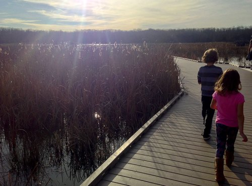 Strolling the boardwalk at Huntley Meadows Park