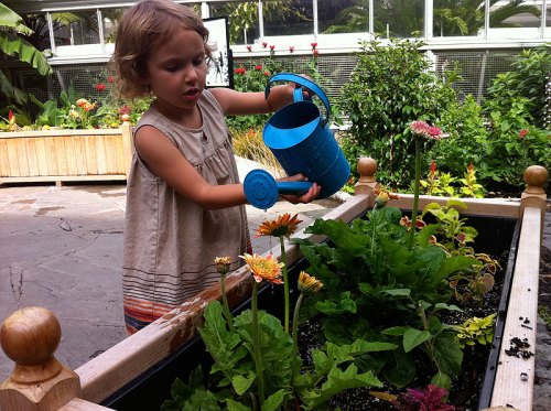Tending to the USBG Children's Garden