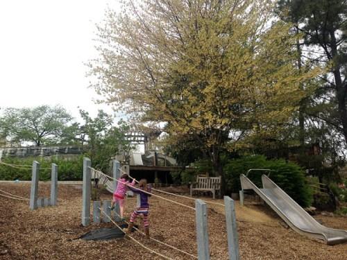 wnc_playground3