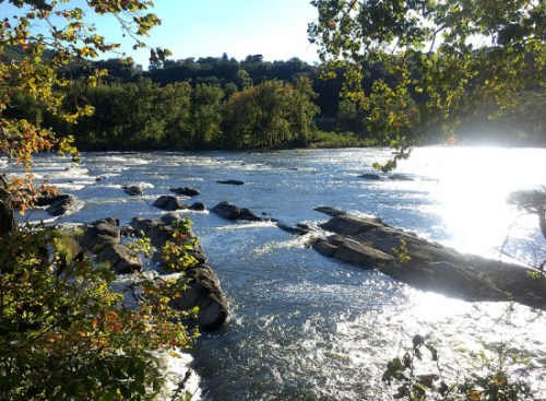 harpers_river_view