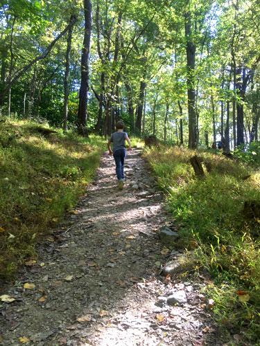 harpers_trail_owen