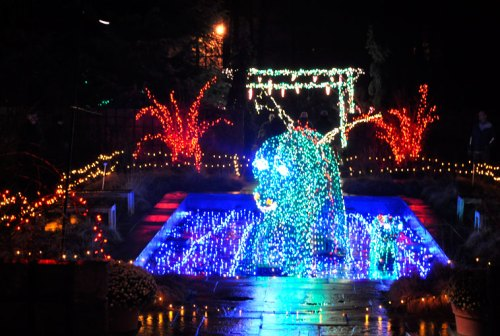 Brookside's spectacular Garden of Lights is back after a break last year
