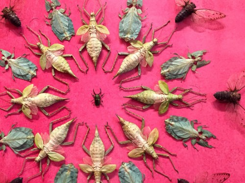 Designs on the walls are made of dead bugs