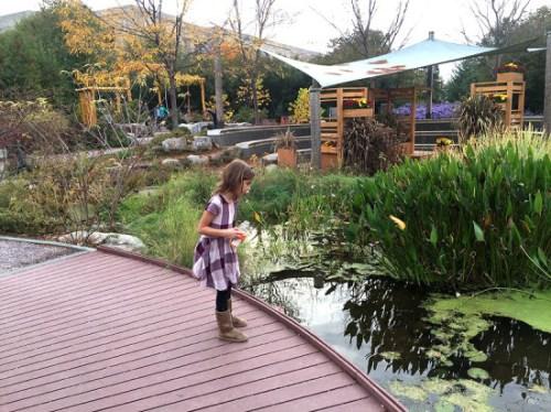 Outdoors at the U.S. Botanic Garden