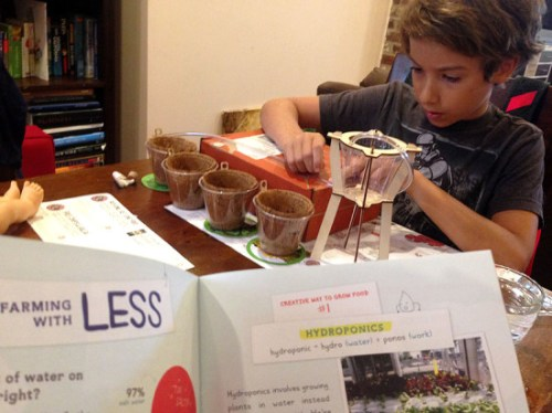 Setting up a drip migration system and learning about hydroponics