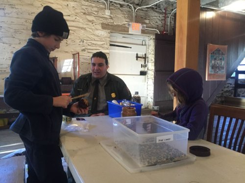 Making birdfeeders with the park ranger