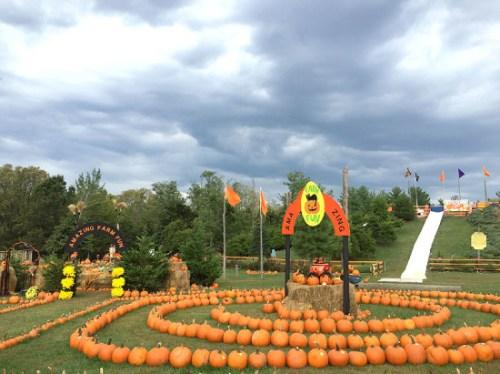 fall_festival_2016