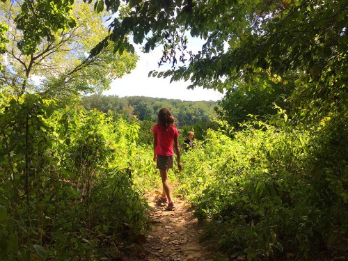 Get a great nature fix at Riverbend Park