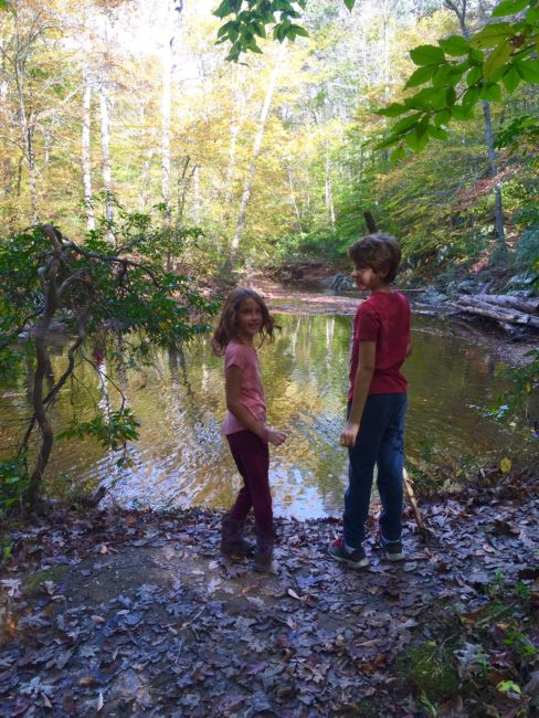 A beautiful dose of nature for these city kids at Prince William Forest Park