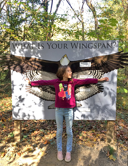 Spread your wings at Potomac Overlook Regional Park