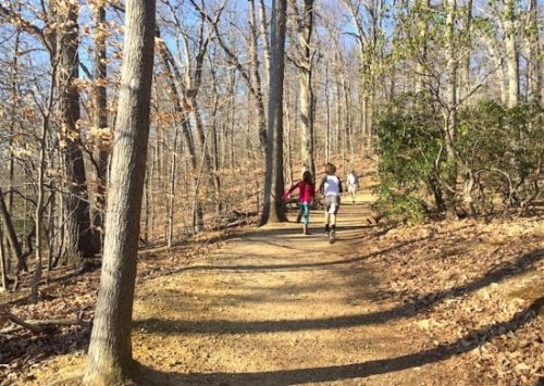 Go for a hike (or run) in the woods at Rock Creek Park