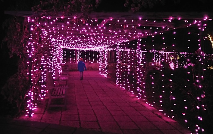 scenes from garden of lights at brookside gardens