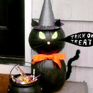 Halloween Pumpkin Display Craft, Halloween craft, Black Cat craft for Halloween, Halloween Pumpkin Decorating Ideas, A fun thing to do with kids, A fun thing to do with kids in Connecticut