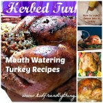 Mouth Watering Turkey Recipes that are sure to wow all of your guests at Thanksgiving, and Christmas