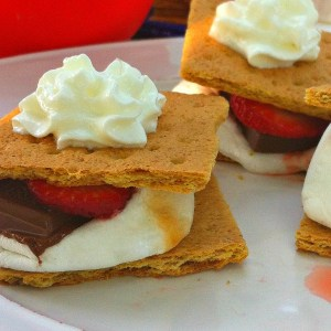 Strawberry Shortcake Smore's or Heaven as I like to call it! Wow!