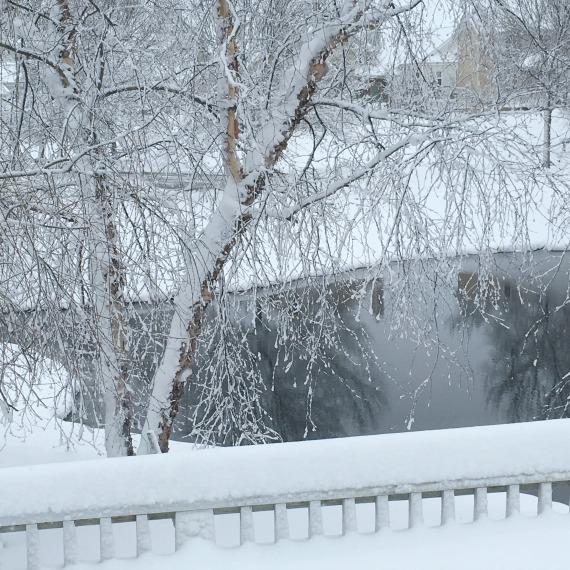 winter-picture