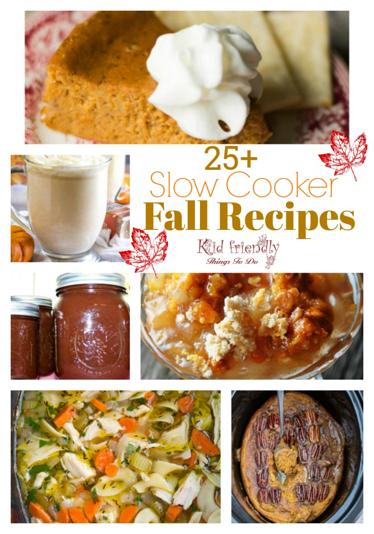 Over 25 Delicious Looking Fall Slow Cooker Recipes to Try - Crockpot recipes to warm you up and feed your soul this fall! spice, pumpkin recipes, drinks, apple recipes, soup , and dinner www.kidfriendlythingstodo.com