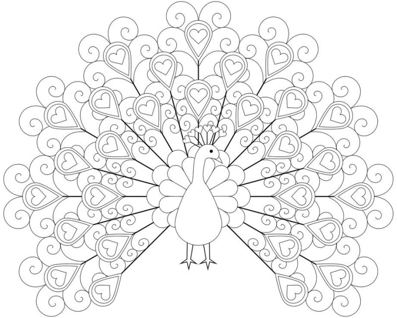 Printable peacock coloring pages book for kids