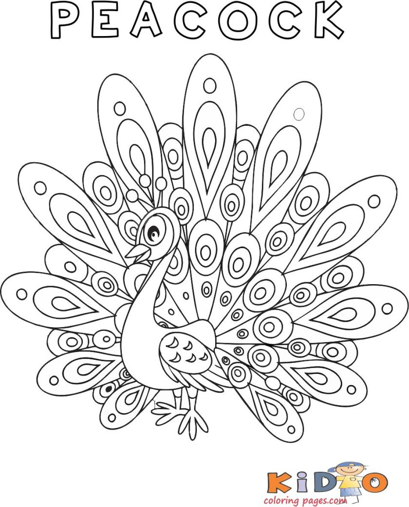 pirntabel peacock coloring pages