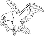 printable eagle bird coloring page