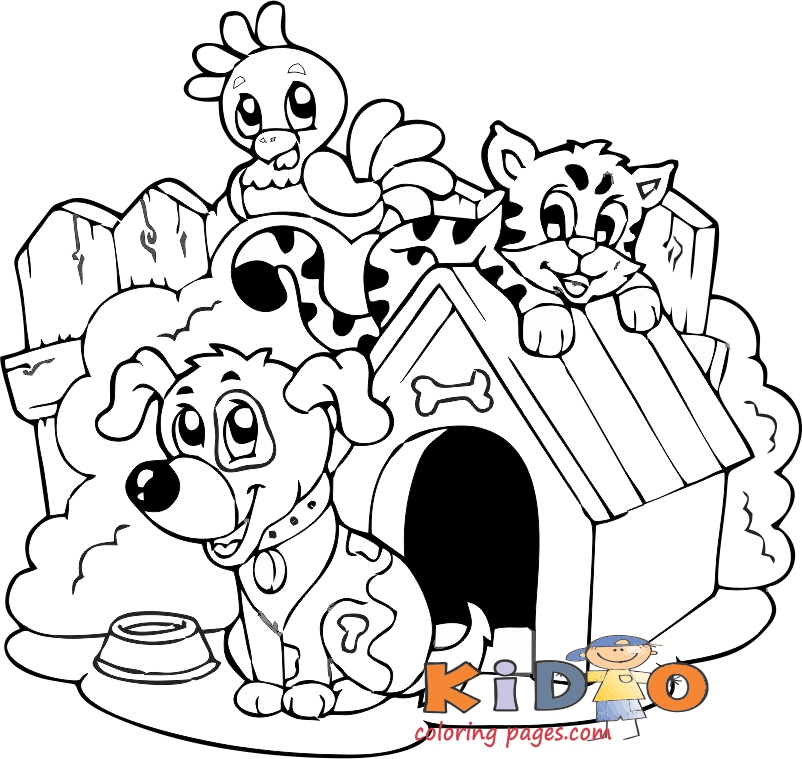 cat dog and chicken coloring pages
