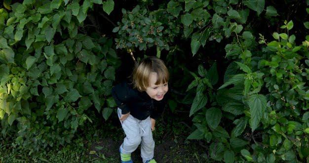 Μικρά παιδιά σε δράση (video)