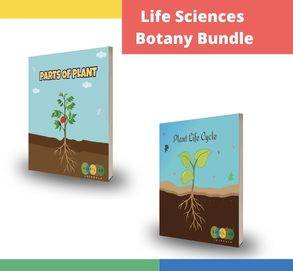 Plant science activities for kids