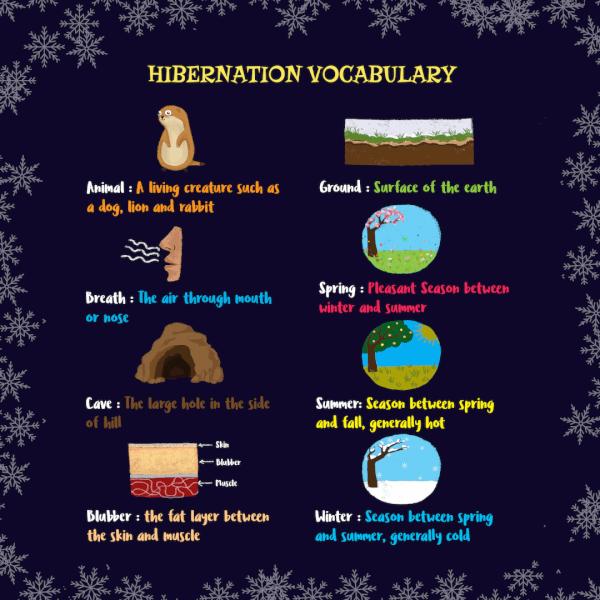 Hibernation activities for kids