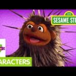 Furchester Hotel: Meet Pierce, the Porcupine