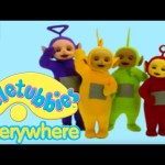 Teletubbies Everywhere: Dung Beetles (South Africa) – Full Episode