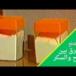 الفرق بين الملح والسكر- عيشوا لحظات #افتح_يا_سمسم- Iftah Ya Simsim