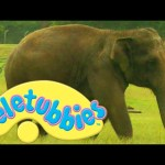 Teletubbies: Washing the Elephant – Full Episode