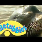 Teletubbies: Sea Lions – Full Episode