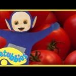 ★Teletubbies English Episodes★ Making Salad ★ Full Episode – HD (S06E154)
