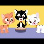 Kids TV Nursery Rhymes – Three Little Kittens | Popular nursery rhyme for kids | kids songs