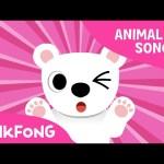 Paw Paw Polar Bear | Polar Bear | Animal Songs | Pinkfong Songs for Children