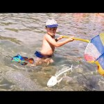 Kids playing. Funny video compilation from KIDS TOYS CHANNEL
