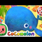 Baby Blue Whale Song + More Nursery Rhymes & Kids Songs – CoComelon