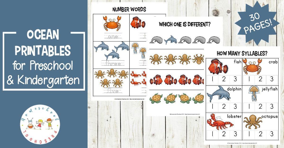 Preschool Worksheets Ocean Theme 4
