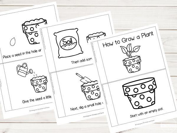Preschool Worksheets On Plants 5