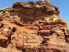 Red sandstone, Hilbre Island