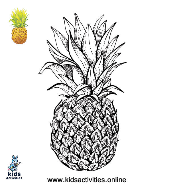 Summer coloring pictures printable