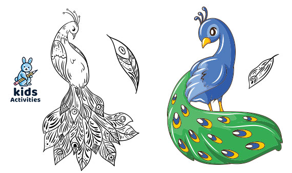Free, Printable Peacock Coloring Pages