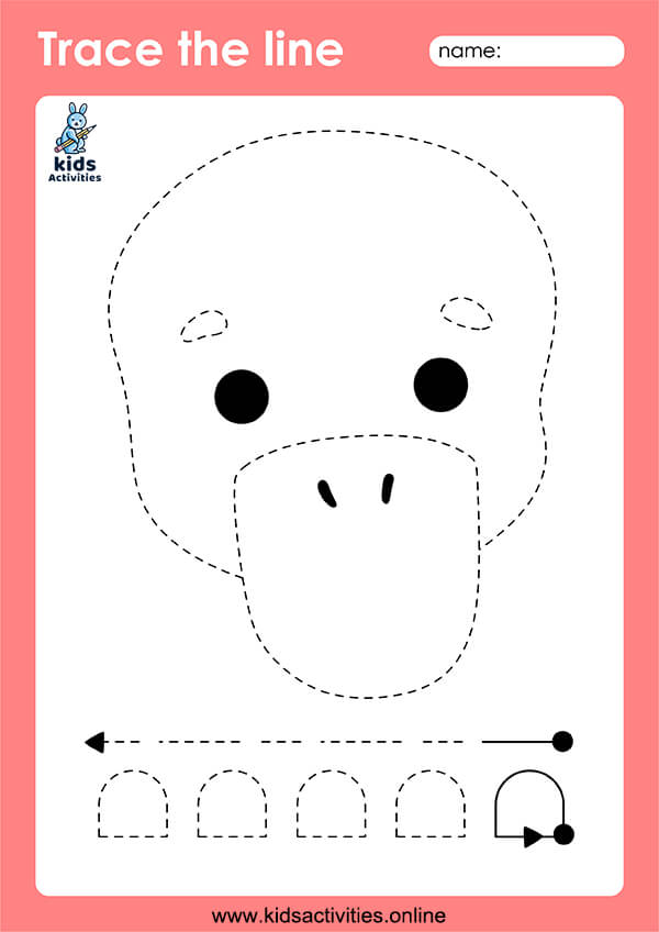 picture tracing worksheets - Straight Lines